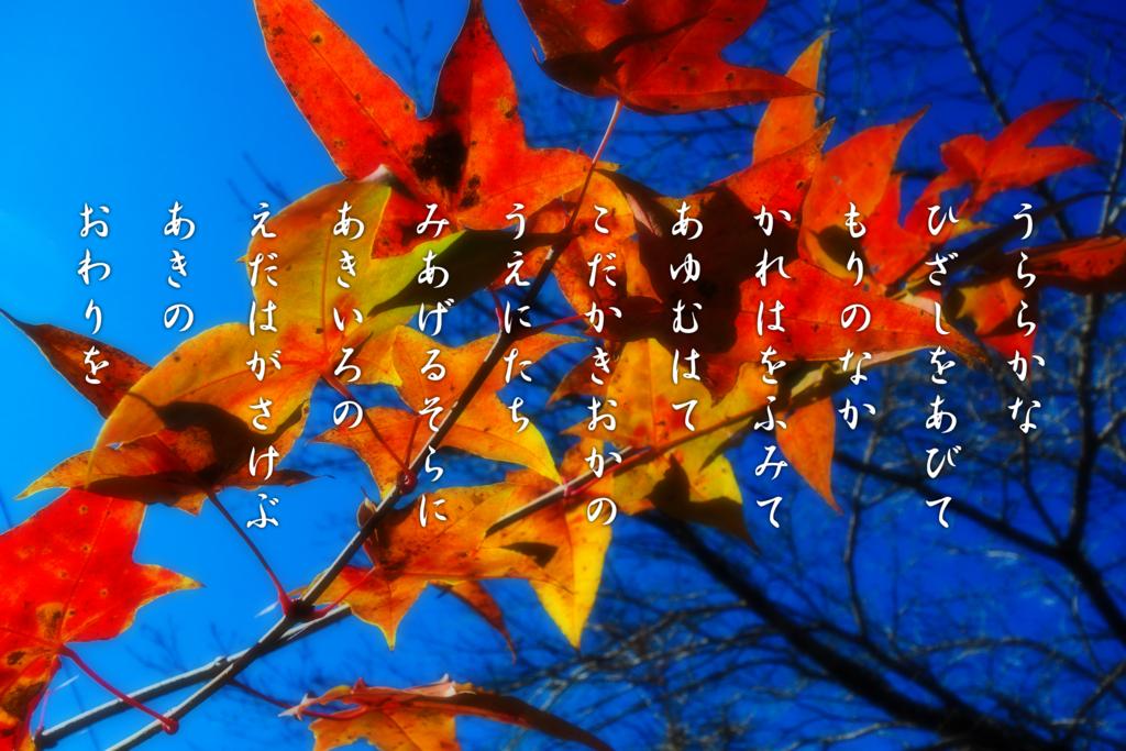 f:id:shigenone:20161211215718j:plain
