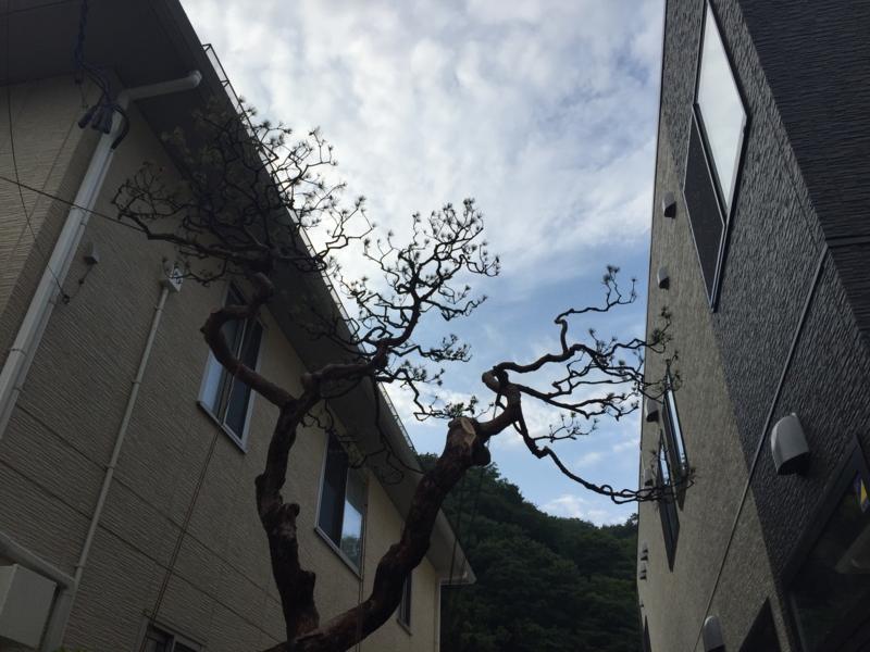 f:id:shigeru0214jp:20150621180750j:plain