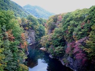 f:id:shigeruna:20061001153927j:image