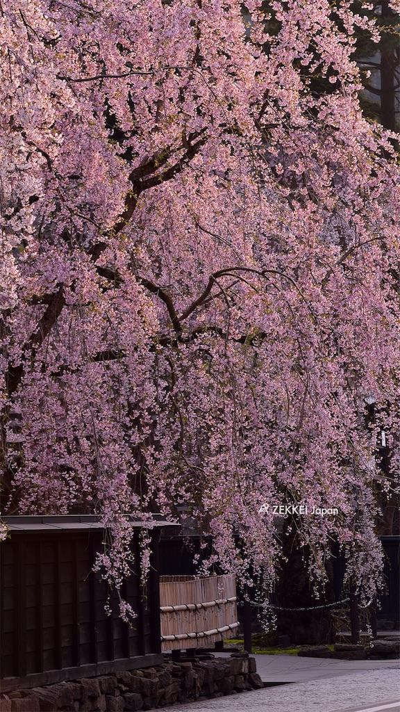 f:id:shigeruok:20170305005337j:image