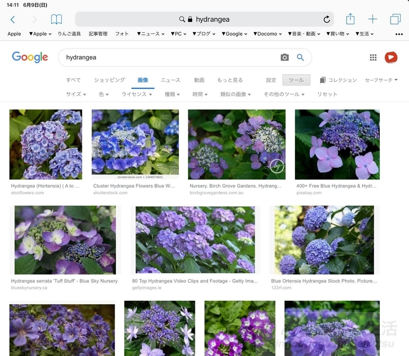 iPadのSafariでGoogle画像検索