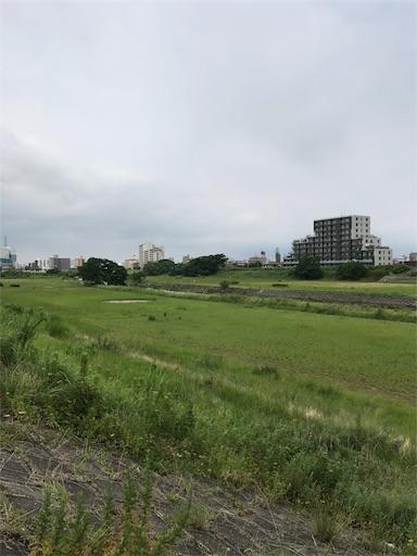 f:id:shigetaka4348:20170723163532j:image