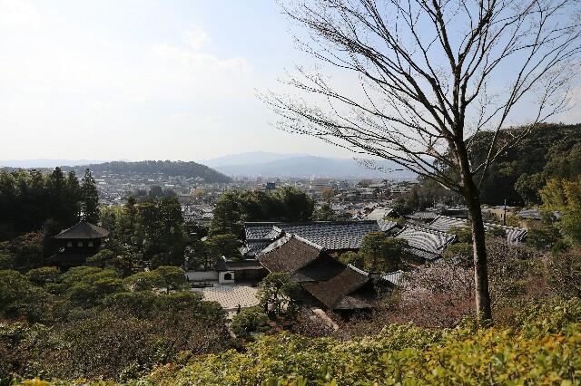 f:id:shigeyuki0506:20210404205622j:image