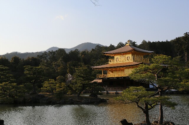 f:id:shigeyuki0506:20210404205732j:image