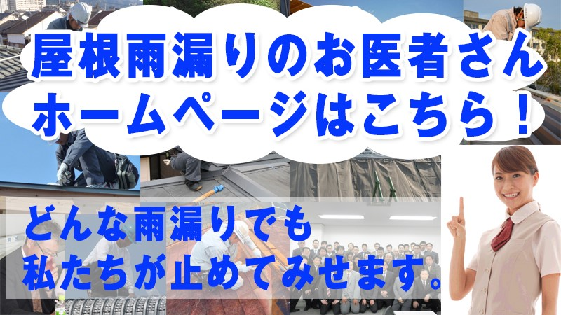 f:id:shigia-amamori:20170904104021j:plain