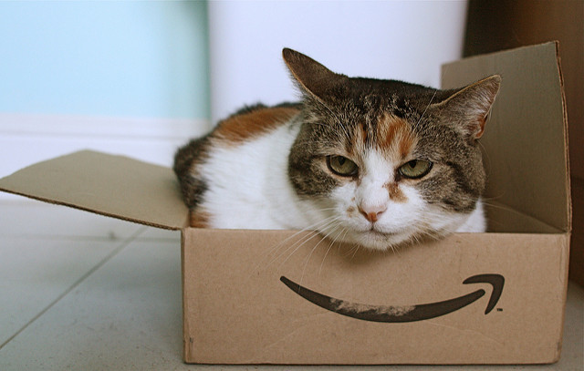 Amazonの箱に入った猫がこちらを見ている画像