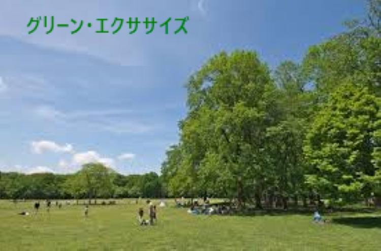 f:id:shiho196123:20190317132758j:plain