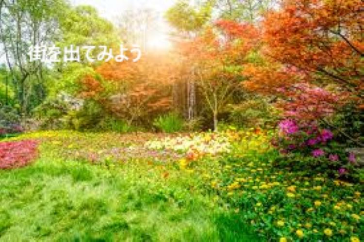 f:id:shiho196123:20190317140623j:plain