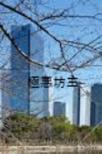 f:id:shiho196123:20190326133722j:plain