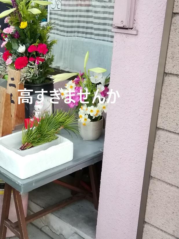 f:id:shiho196123:20190411215902j:plain