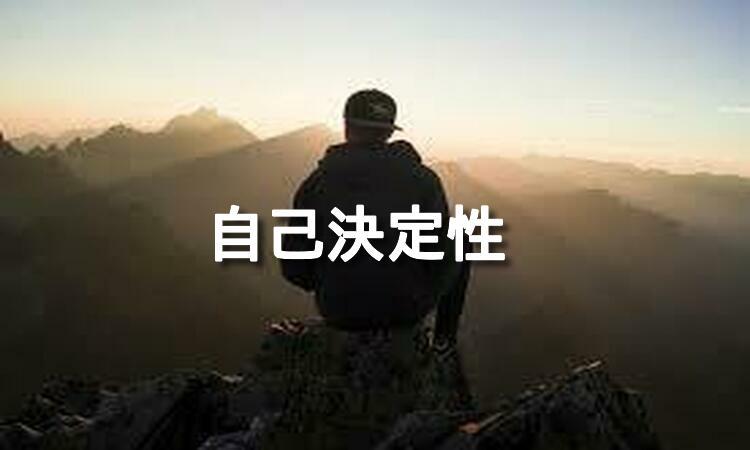 f:id:shiho196123:20190425121329j:plain