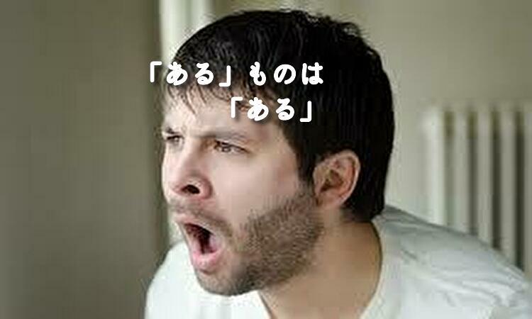 f:id:shiho196123:20190427184707j:plain