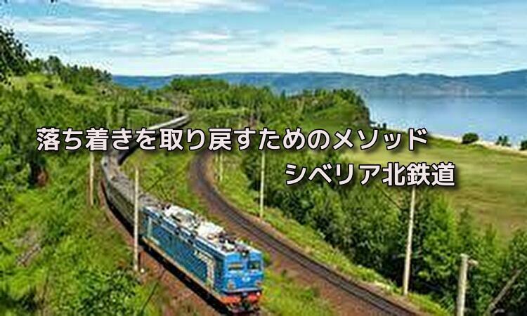 f:id:shiho196123:20190507045217j:plain