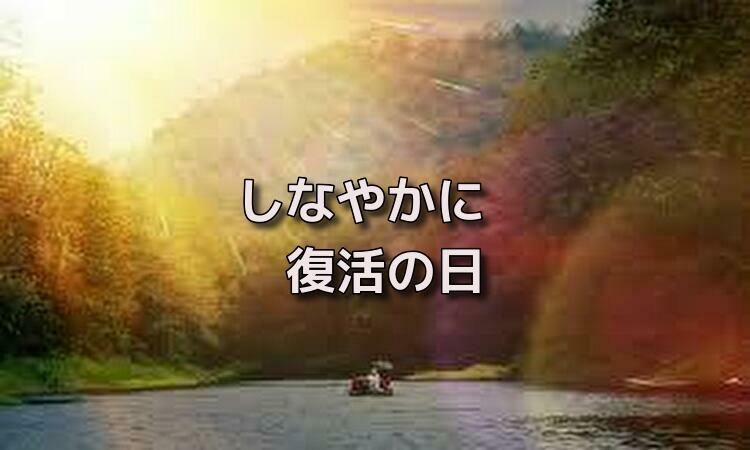f:id:shiho196123:20190514090208j:plain