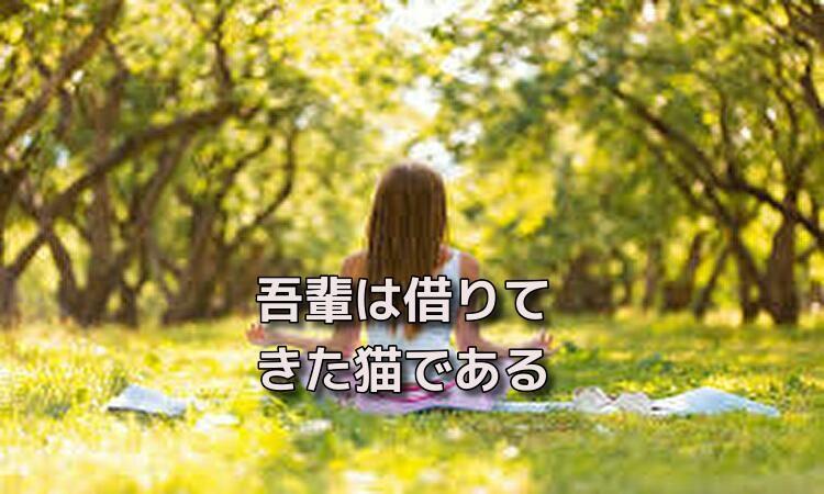 f:id:shiho196123:20190515140854j:plain