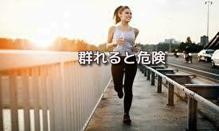 f:id:shiho196123:20190531191933j:plain