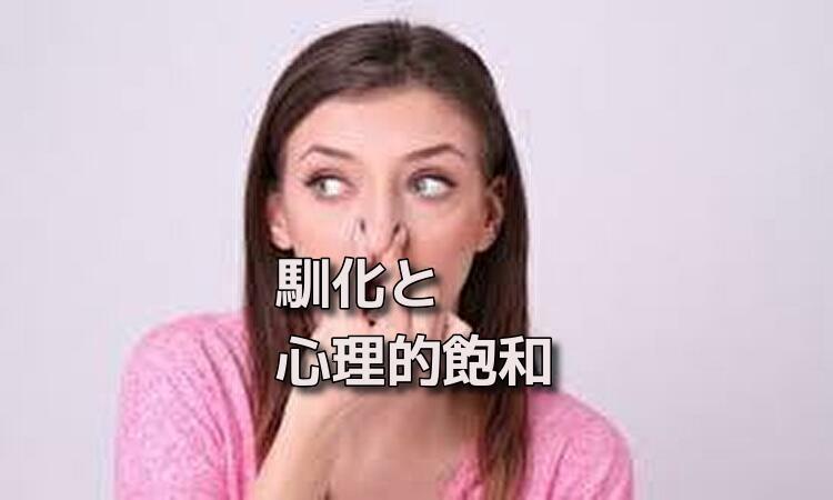 f:id:shiho196123:20190614173005j:plain