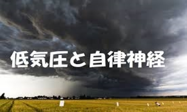 f:id:shiho196123:20190619154707j:plain
