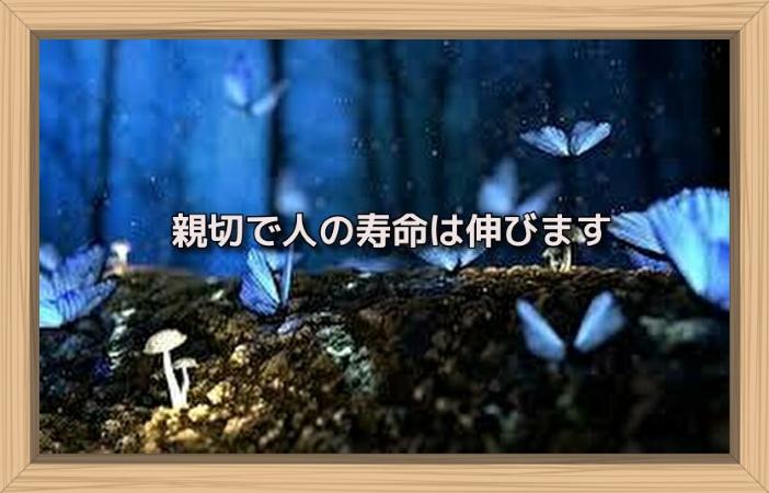 f:id:shiho196123:20190629150253j:plain