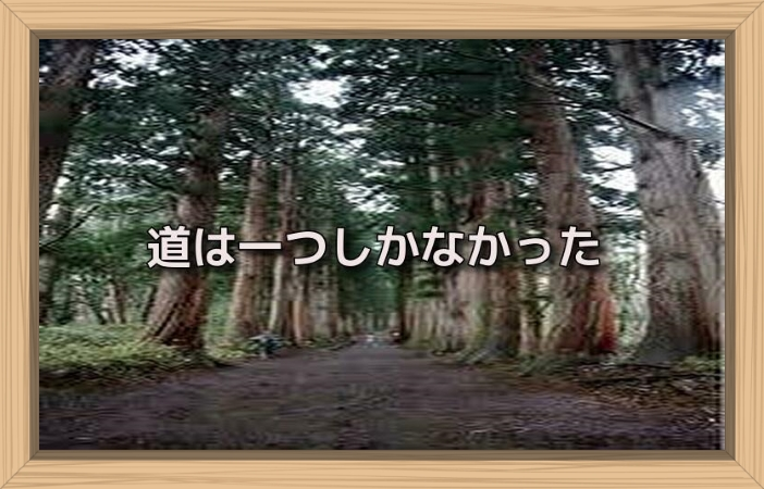 f:id:shiho196123:20190630154328j:plain