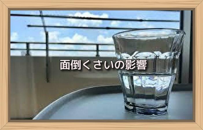 f:id:shiho196123:20190701130829j:plain