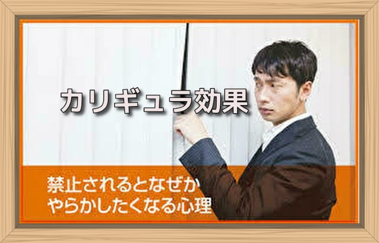 f:id:shiho196123:20190704161610j:plain