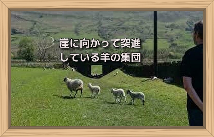 f:id:shiho196123:20190710224202j:plain