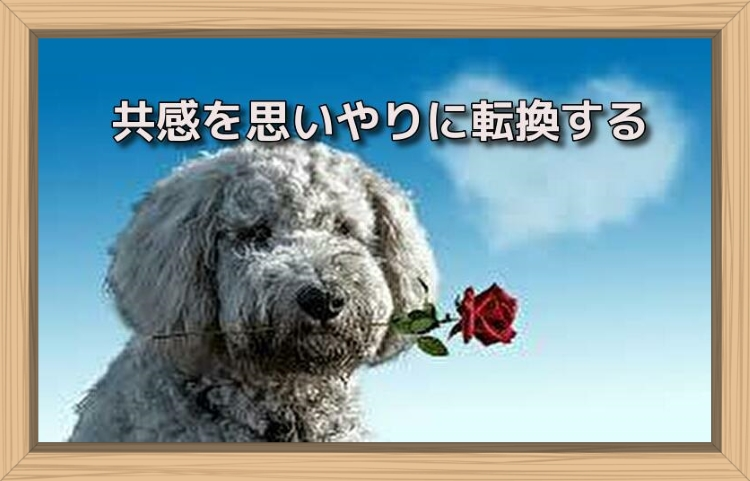 f:id:shiho196123:20190713124803j:plain