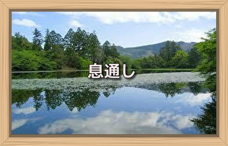 f:id:shiho196123:20190717151433j:plain