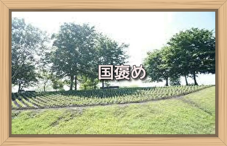 f:id:shiho196123:20190717221347j:plain