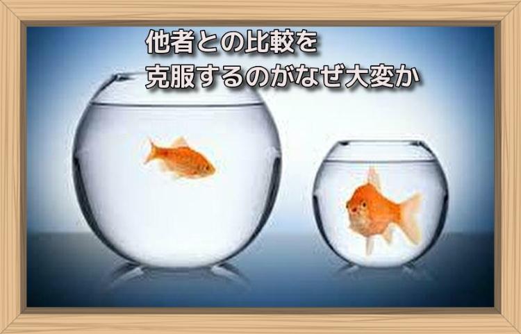 f:id:shiho196123:20190718144124j:plain