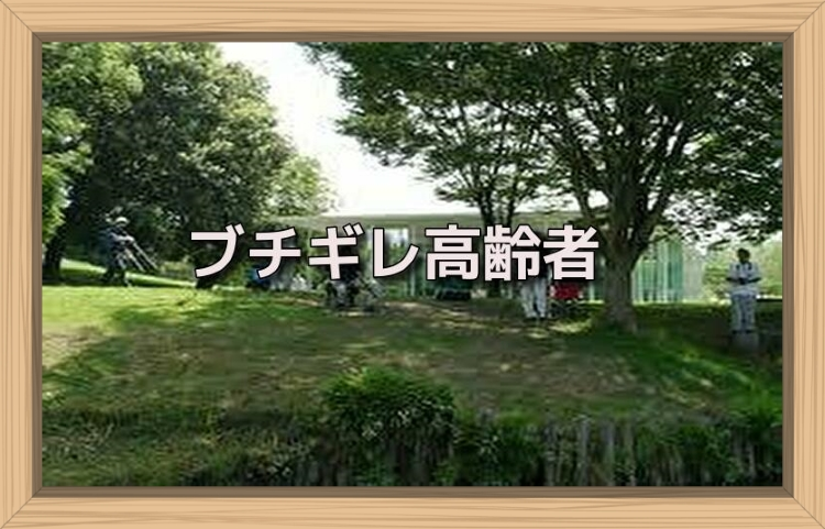 f:id:shiho196123:20190719135637j:plain