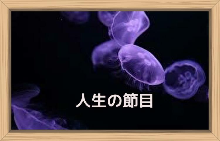 f:id:shiho196123:20190719141022j:plain