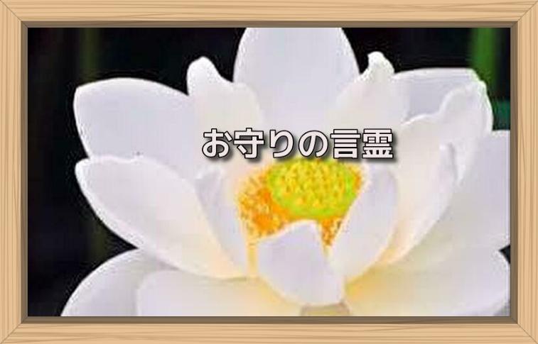 f:id:shiho196123:20190720214223j:plain