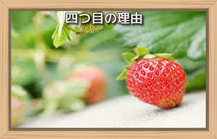 f:id:shiho196123:20190722180251j:plain