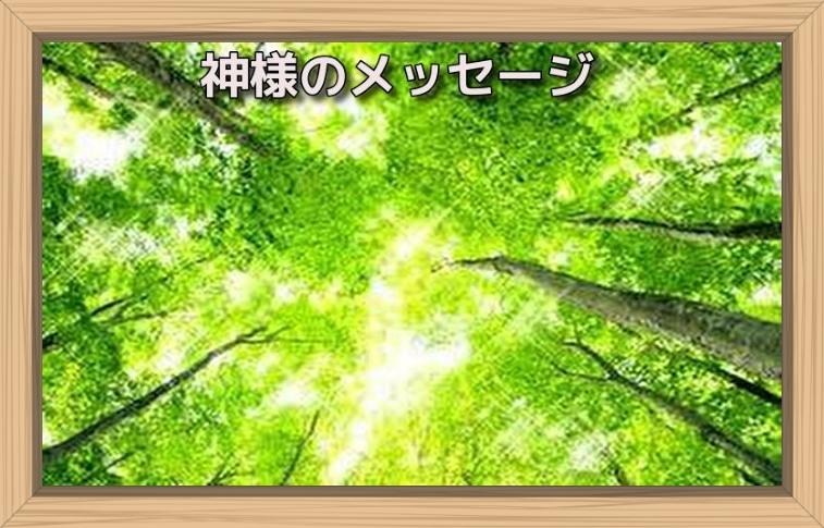 f:id:shiho196123:20190723172444j:plain