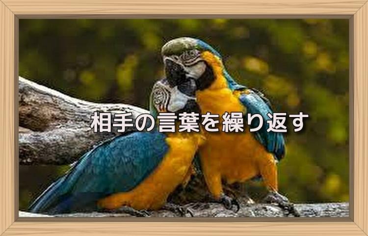 f:id:shiho196123:20190802140331j:plain