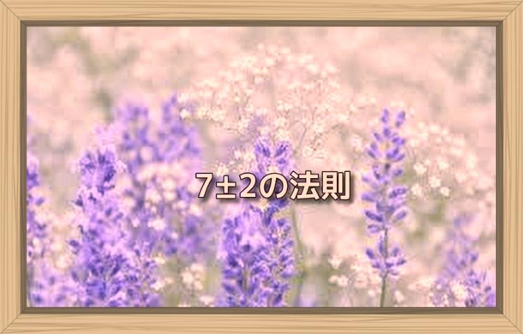 f:id:shiho196123:20190808194617j:plain