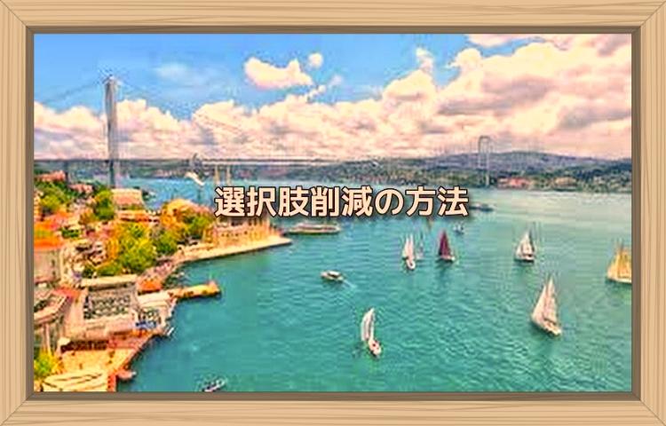 f:id:shiho196123:20190808195056j:plain