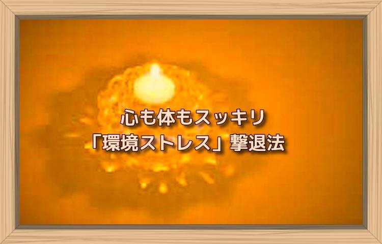 f:id:shiho196123:20190813133209j:plain