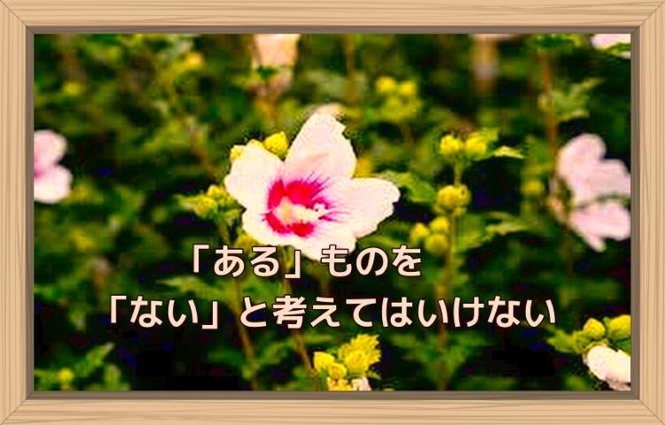 f:id:shiho196123:20190817182234j:plain