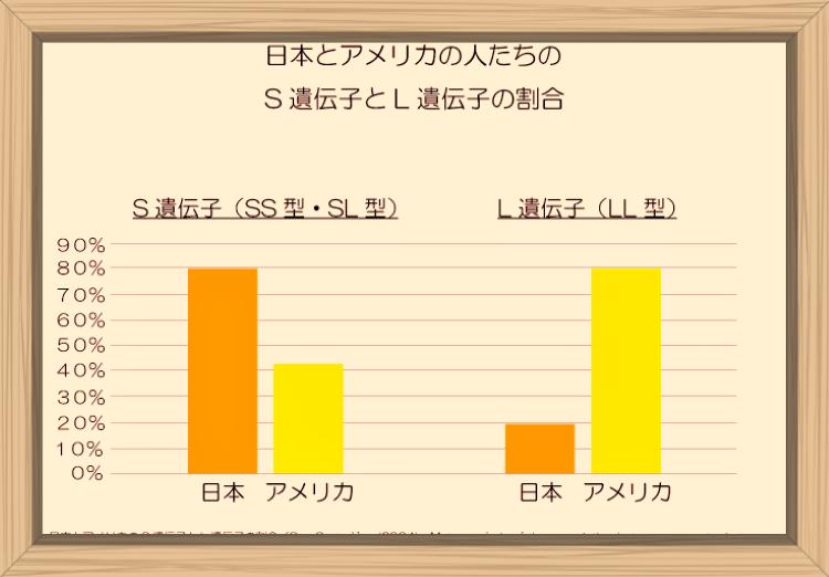 f:id:shiho196123:20190819162928p:plain
