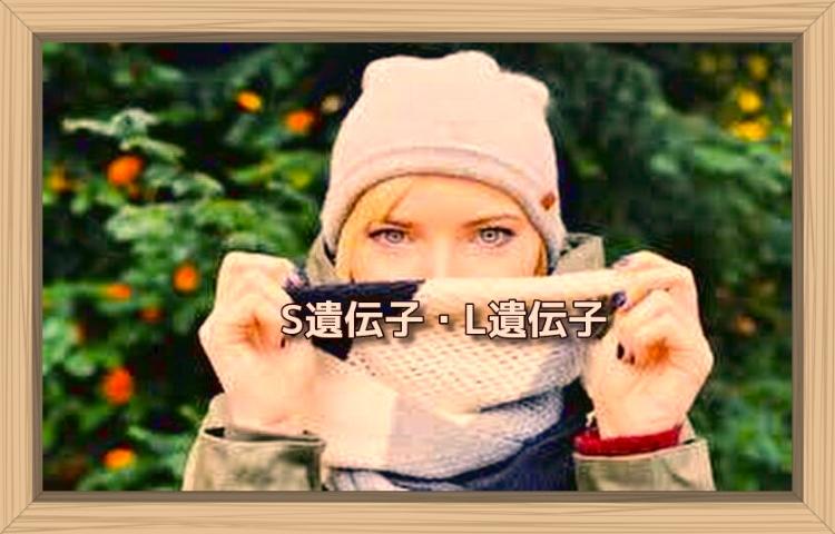 f:id:shiho196123:20190819182510j:plain