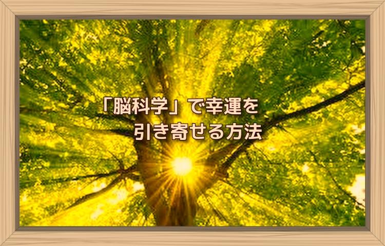 f:id:shiho196123:20190820163414j:plain