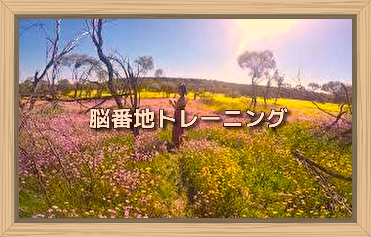 f:id:shiho196123:20190824163903j:plain