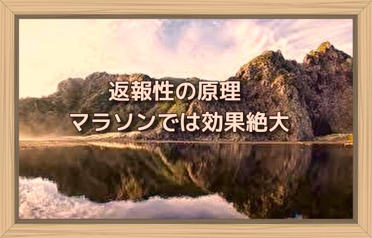 f:id:shiho196123:20190826180103j:plain