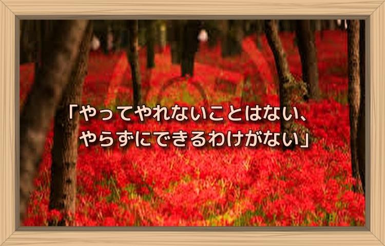 f:id:shiho196123:20190831153433j:plain
