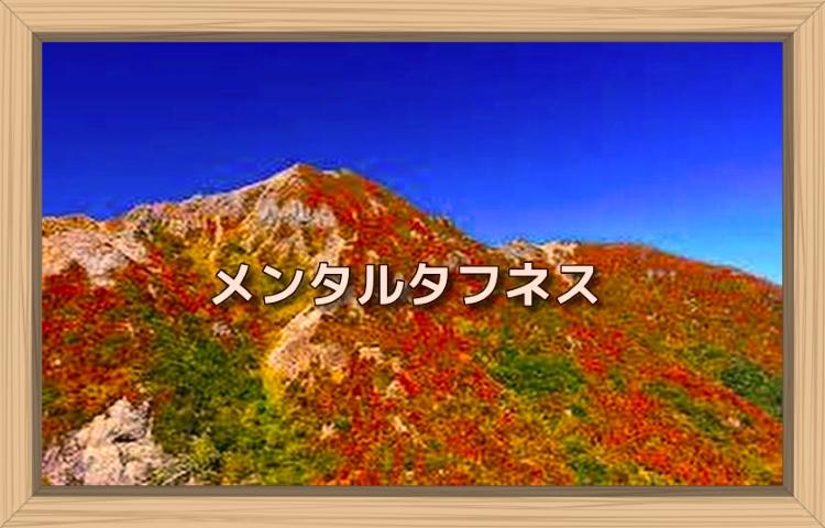 f:id:shiho196123:20190831231042j:plain