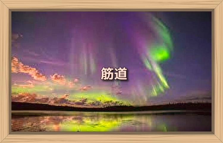 f:id:shiho196123:20190904203501j:plain