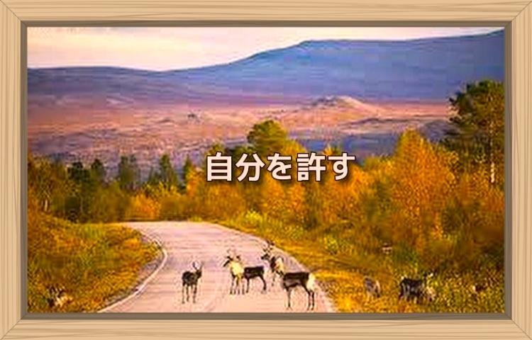 f:id:shiho196123:20190913185228j:plain